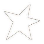 Wandornament metalen ster goud | vtwonen